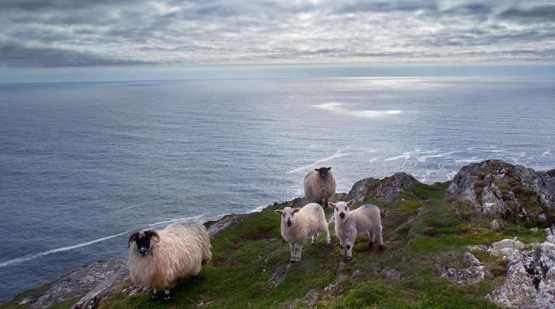 Guida turistica Irlanda in omaggio