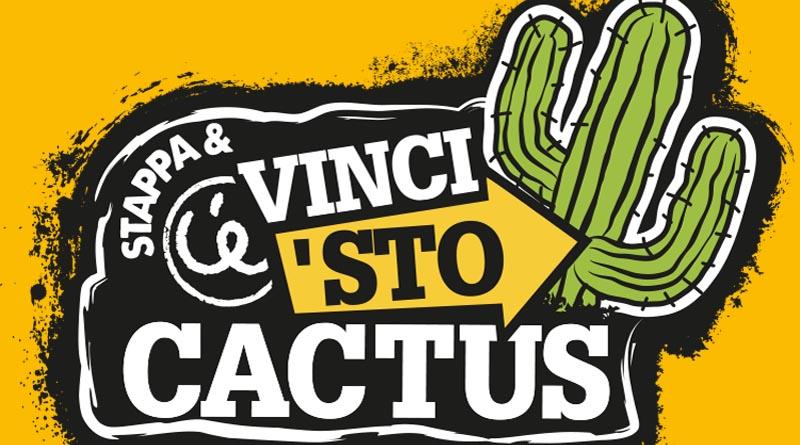 Concorso Ceres vinci 'sto cactus
