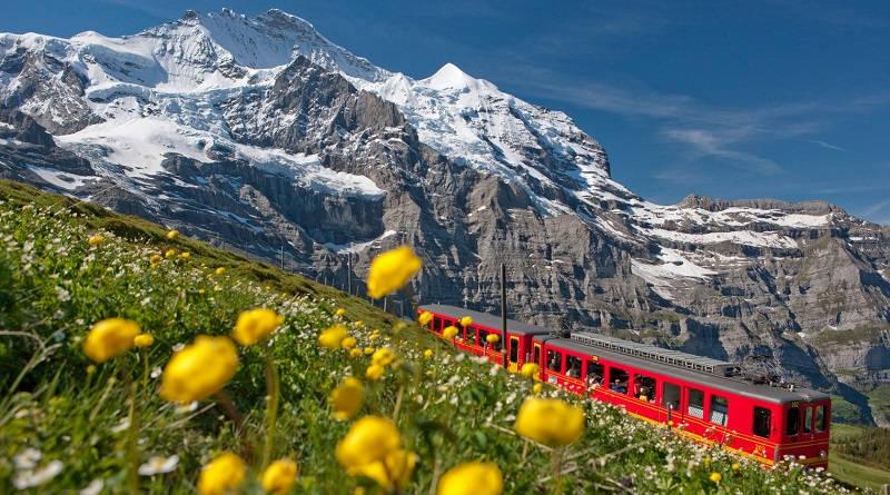 Concorso Natural Swiss, premi in contanti e acquisti gratuiti