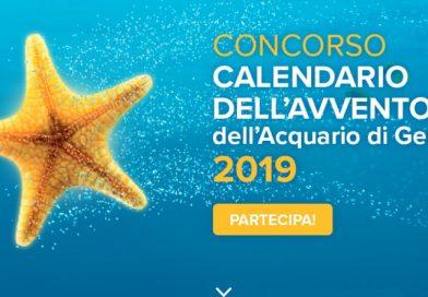 Concorso Acquario di Genova, calendario dell'Avvento