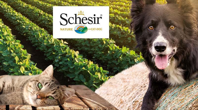 Concorso Schesir, io e il mio cane/gatto insieme viviamo da bio